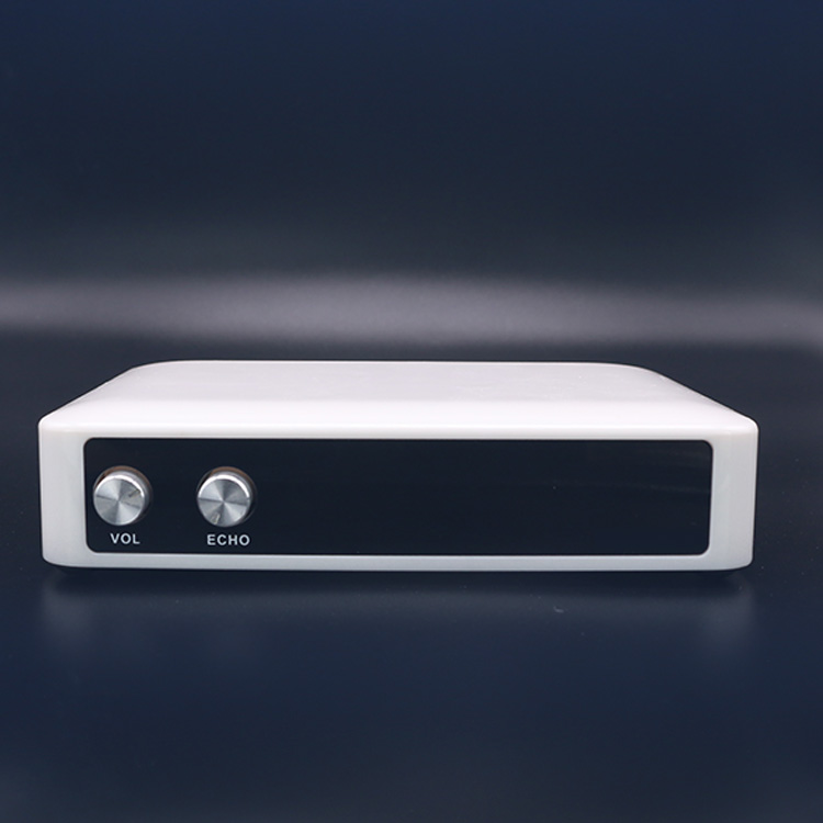 Phụ Kiện Mp3 DVD DSP Âm Thanh KTV Karaoke Hệ Thống Nhà