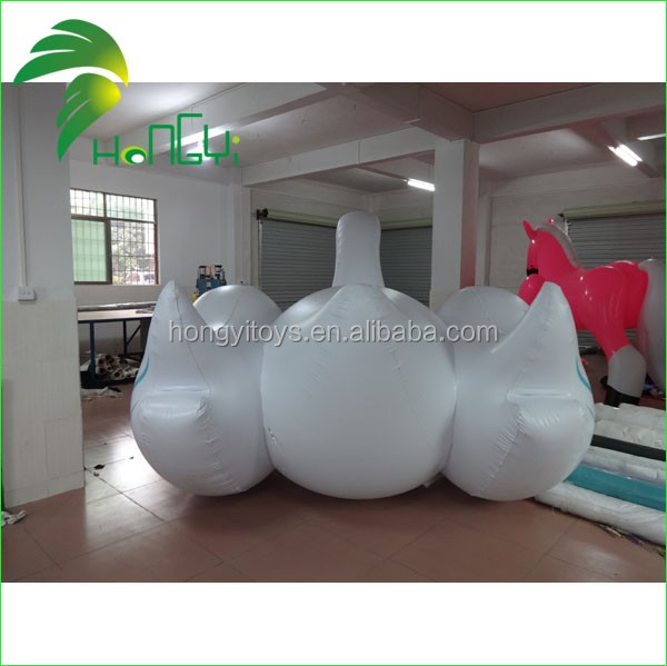 HYSIS02-inflatable swan