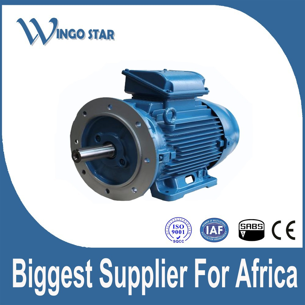 220v 380v 460v Or On Request Induction Motor