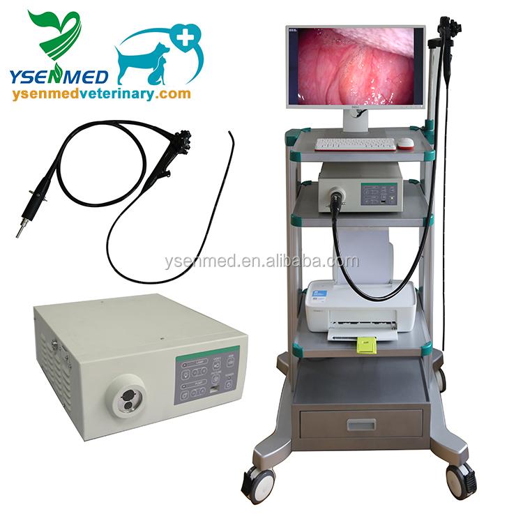 YSNJ-100VET дешевые животных видео эндоскопа системы ветеринарный эндоскоп цена для продажи
