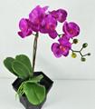 decoración de orquídeas real toque de látex de orquídeas phalaenopsis