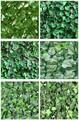 Vallas de plástico con arbustos artificiales decorativos para jardines verdes.
