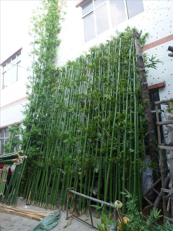 Real Trunk Bamboo Artificial Bamboo Tree For Outdoor Wall