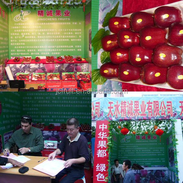 Tianshui huaniu apple fruits ripen in August