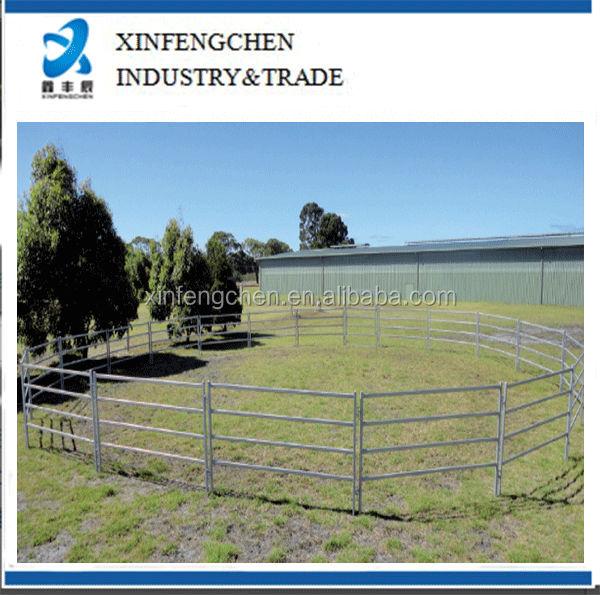 Horse-round-yard_4BarEconomy.jpg