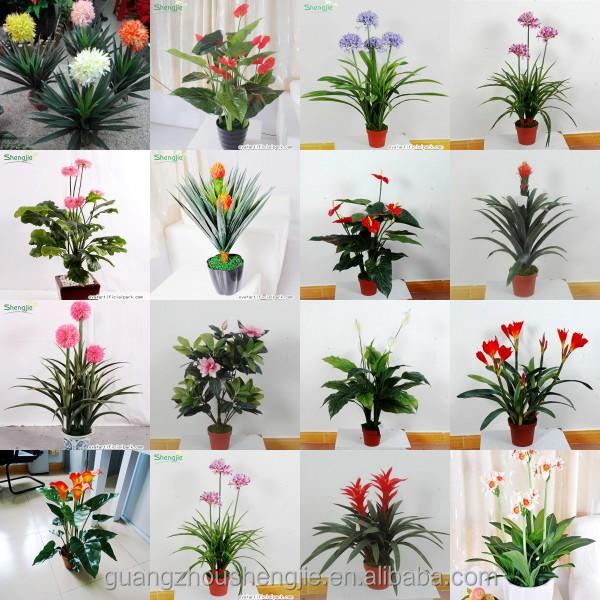 Sjws140525012 shengjie fabricant gros jardin paysager for Plante decorative exterieure