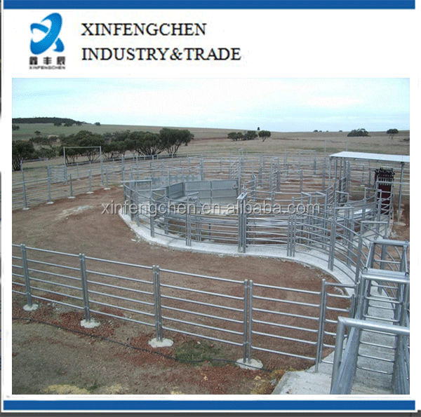 Permanent-Cattle-Yards--Panel-Format.jpg