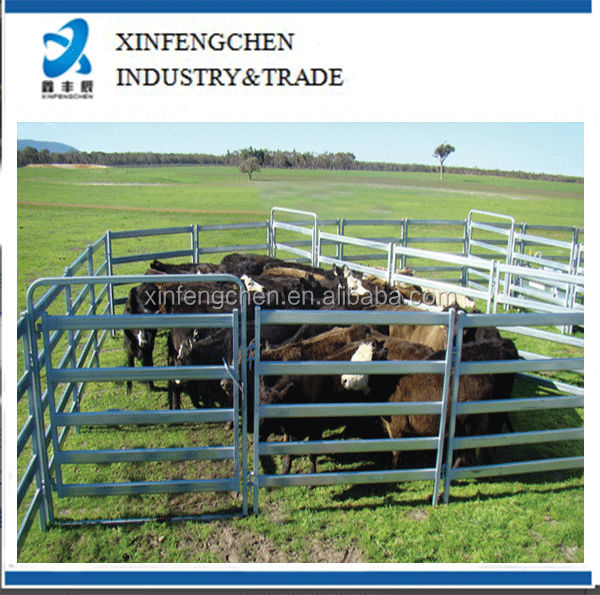 CattlePanel_5BarCattleKing