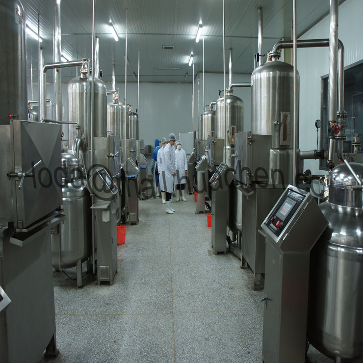 New Technology of Food Processing-Vacuum Low Temperature Oil Bath Dehydration Equipment
