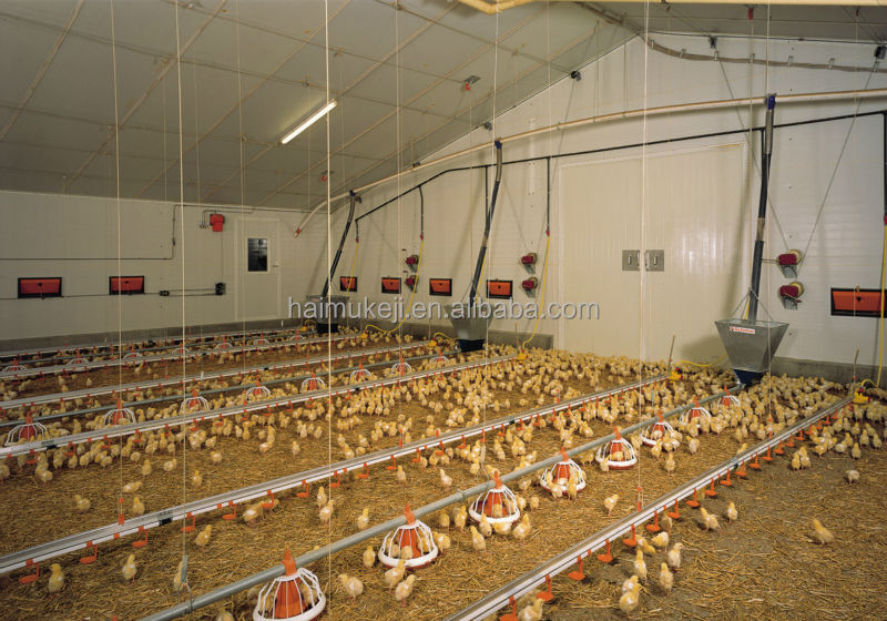 Poultry House Chicken House Farm Poultry