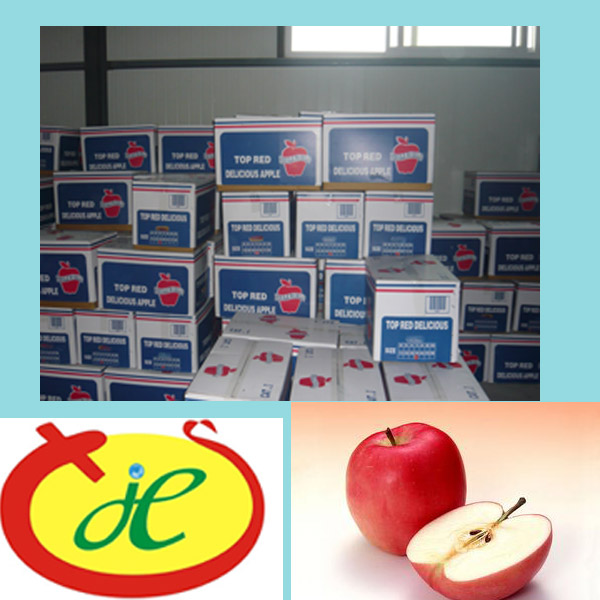 2014 Royal Gala apple fruits mature in July