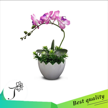low price hotsell artificial orchids flower with resin pot