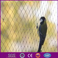 bird netting for fruit trees/uv warp knitted bird net/professional bird net