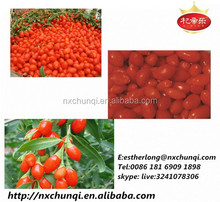 Factory Export A grade Gojiberries Fruit from ningxia