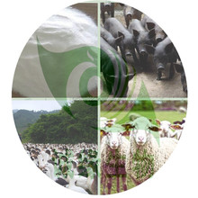 Animal feed regulations 50% Coated Sodium Butyrate/ coated sodium butyrate 30% 90% feed additives ex our factory low price