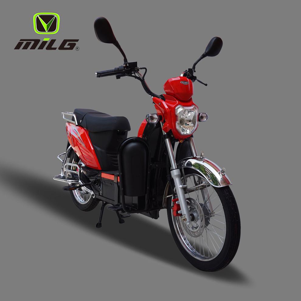 electric bike      .jpg