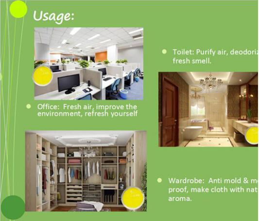 Air freshener usage.jpg