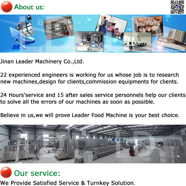 Stainless steel fruit dry line vegetable drying machine wheat snack pellets dryer in Jinan city China