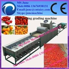 Round fruit and vegetable sorting/grading machine/packing fruit sorter machine 0086 13676938131