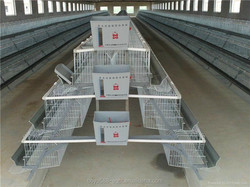 Automatic layer chicken battery cage /layer egg chicken cage/layer chicken cage with feeder and drinker