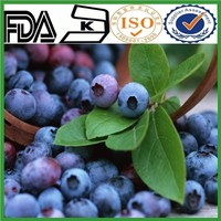 Dried Fruit Ratio Extract Blueberry P.E (Chinese Bilberry P.E) UV anthocyanidins 5%-30%