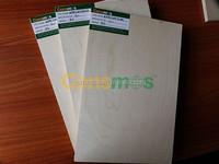 Consmos Best Price Birch Plywood Malaysia/Birch Plywood Panels