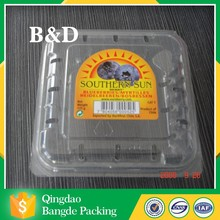 Hot new products for 2015/PVC/PET/PS plastic fruit tray