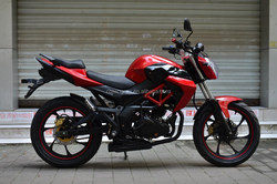 200cc 250cc super hot seller dragon warrier racing motorcycle