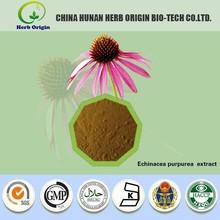 herbal extract 100% pure natural Echinacea Purpurea Extract/echinacea purpurea root extract