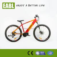 hot sale cheap 36V 250W big wheel mountain electric bike