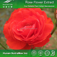 100% Pure Rose Flower Plant Extract 10:1