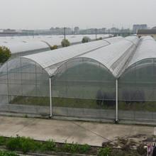 Cheap High Quality Waterproof Transparent Plastic Greenhouse