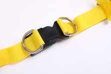 new design Dog Leashes fashion pet product cheap dog Leashes