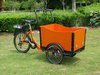 2015 hot sale Electric cargo Tricycle / 3 wheel Cargo Trike/cargo bike