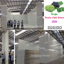 Fan cooling fruits cold store for grape with precooling cold room