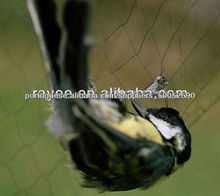 rede para pegar passaros rede para captura de aves