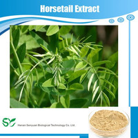 Natural Organic Horsetail Grass Extract