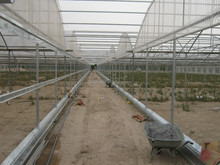 Greenhouse roofing material clear plastic resistance polycarbonate film for greenhouse tunnel