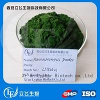 Hot sale Nannochloropsis Salina powder