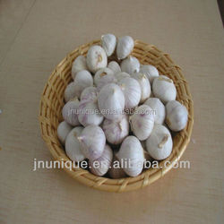 braid garlic for sale