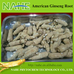 2015 Prices American Ginseng Crude Herb Medicine