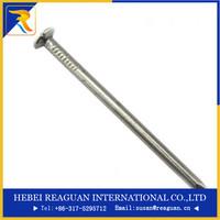 EG/HDG/Mech/polished galvanised/polished round wire nails