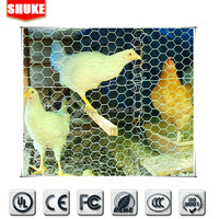 Alibaba China 1/4 inch galvanized chicken wire mesh