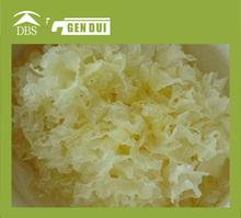 2015 Dried White Agaric Dried fungus