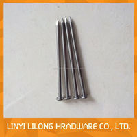 common nail iron nail factory with wide varieties