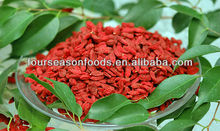 Organic IQF goji berry,chinese supplier 2015 new good price high quality