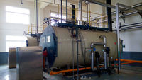 China industrial low pressure condensing gas fired milk steam boiler
