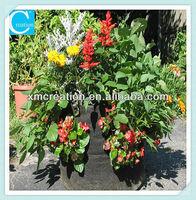 special garden planter