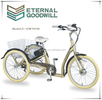 2015 hot sale two front wheel shopping electric cargo tricycle /bike / bicycle for childrenGW 7019E
