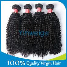 Adorable Beautiful High Class 6a Grade Good Quality Popular kinky curly hair Malaysian Hair For African Hair Braids